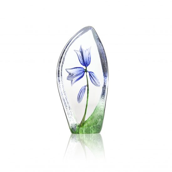 Floral Fantasy Harebell