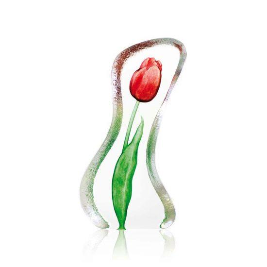 Floral Fantasy Tulip